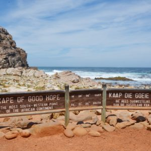 Safari experience cape point